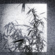 Bamboo Silhouette — Stock Photo #17473393