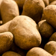 Potatoes — Stock Photo #23673333