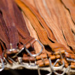 Belts — Stock Photo #24904471