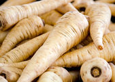 Parsnips — Stock Photo