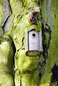 Nesting box — Stock Photo
