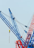 Cranes — Стоковое фото