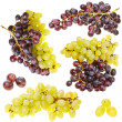 Collection of ripe fruit grape cluster — Stockfoto