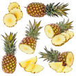 Stock Photo: Set of pineapple