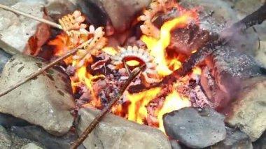 Bacon over a campfire — Stock Video