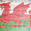 Flag of Wales — Photo