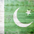Flag of Pakistan — Stock Photo #13902521