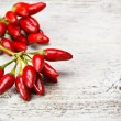 Red hot chili peppers — Stock Photo #13931259