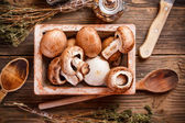 Fresh brown mushrooms — Stock Photo