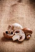 свежие съедобный гриб — Стоковое фото