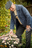 Senior man with flower — Stockfoto