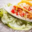 Tacos with chicken — Stock Photo #16963959