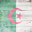 Flag of Algeria — Foto Stock