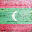 Flag of the Maldives — Photo