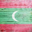 Flag of the Maldives — Stockfoto