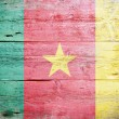 Flag of Cameroon — Stock fotografie