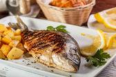 Peixe dourado — Foto Stock