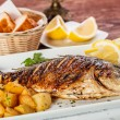 Bream fish — Stockfoto #19537053