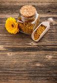 Pollen granules — Fotografia Stock