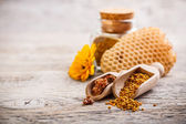 Pollen and propolis — Stock Photo