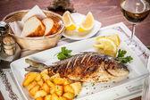 рыба дорадо — Стоковое фото