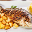 Stock Photo: Bream fish