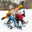 Family having fun — Stock Photo #19812593
