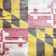 flagga maryland — Stockfoto #19873981