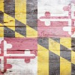 flagga maryland — Stockfoto