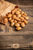 Almond nuts — Stock Photo