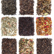 Tea leaves collection — Stockfoto