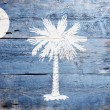 Flag of the state of South Carolina — Stockfoto