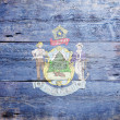Flag of the state of Maine — Stock Photo #20400953