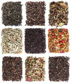 Tea leaves collection — Stock Photo