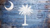 Bandera del estado de carolina del sur — Foto de Stock