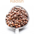 Stock Photo: Radish seeds