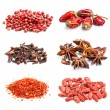 Collection of spices — Stock Photo #21381717