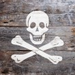Flag of piracy — Stock Photo #21381803