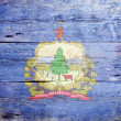 Flag of the state of Vermont — Foto Stock