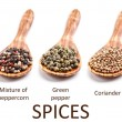 Collection of spices — Stock Photo #21486519