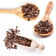 Cloves — Stock Photo #21530161