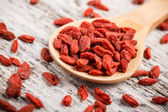 Goji berries — Foto de Stock