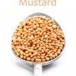 Mustars seeds — Stock Photo #21591015