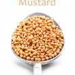 Stock Photo: Mustars seeds