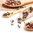Peppercorn mix — Stock Photo #21591053