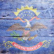 Flag of the state of North Dakota — Stockfoto #21591245