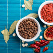 Spices — Stock Photo #22057543