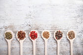 Collection of spices — Foto Stock