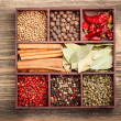 Assortment of spices — Stock Photo #22119449