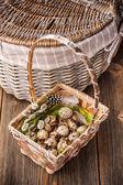 Eggs of quails — Stock Photo